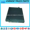 Radiateur véritable pour la pièce de rechange de camion de Sinotruk HOWO (Wg9719530230)