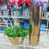 De Pot van het Roestvrij staal van de Tuin van de Pot van de Planter van de Pot van de Bloem van de Pot van de Boom van het landschap