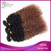 卸し売り安いねじれたカールのOmbreの人間の毛髪の工場毛