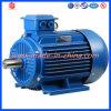 Basse tension Ye2 moteur électrique d'admission à C.A. de pompe à eau de 100 kilowatts