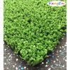 정원 Decoration를 위한 합성 Grass