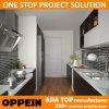 OppeinアジアのプロジェクトのブラウンHPLの通路の木製の食器棚(OP15-HPL02)