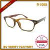 Populäre Entwerfer-Brille u. Rahmen Eyewear
