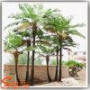 Пальма формы большой искусственной пальмы папоротника по-разному