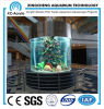 Acrylic cilíndrico Aquarium/Large Transparent Cylindrical Acrylic Aquarium de Customized para Acrylic Aquarium Project