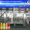 Máquina de rellenar Zhangjiagang (RCGF24-24-8) de la botella del jugo automático de la partícula