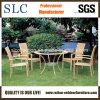Самомоднейшие таблица и стулы для таблицы мебели ротанга сада обедая (SC-B1011)