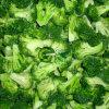 Vegetais congelados IQF novos dos Florets dos bróculos da colheita