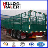 Hohes Side Wall Fence Semi Trailer für Sale