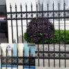 Preiswertes Wrought Iron Fence für Garten mit ISO Certification (DH-Fence-11)