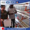 農場の農業のためのタイプ自動電池の挿入の鶏のケージ