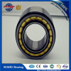 High Precision Cylindrical Roller Bearing (Nu2206)