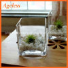 Highot Sale Machine Made Square Glass Vase for Home Decoration and Handmade Square Glass Vase