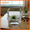 Florero de cristal cuadrado hecho a máquina de la venta de Highot para la decoración casera y el florero de cristal cuadrado hecho a mano