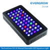 LED Aquarium Light für Fish/Reef/Coral Aquarium