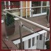 De roestvrije Balustrades van het Dek van het Glas Openlucht (dms-B21595)
