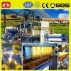 Pianta disponibile di estrazione dell'olio della palma 1-20t/H dell'assistente tecnico