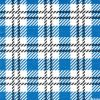 주문을 받아서 만들어진 Wholesale Blue Check Gingham Printed Paper Napkin 33X33cm