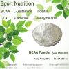 Het Supplement van de Spier van de Creatine van het Poeder van Bcaa van het Poeder van de Voeding van de sport