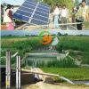 2 인치 깊은 우물 잠수할 수 있는 펌프 태양 수도 펌프