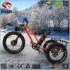 motociclo elettrico della spiaggia della gomma del motore 500W del triciclo grasso della montagna con il doppio freno di disco posteriore