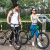 Taiwan-Welle-Laufwerk-Fahrrad-Gebirgsfahrrad mit Scheibenbremse/voll Aufhebung-Gebirgsfahrrad/MTB mit Bell