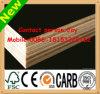 Materiais de construção do Sell da fábrica da madeira compensada de Facd da película/madeira compensada diretos do molde Plywood/Marine