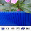 Feuille de PC de cavité de polycarbonate de Jumeau-Mur de la Chine Manufaturer pour la toiture