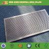 Het roestvrij staal Geperforeerde Blad van het Metaal dat in China wordt gemaakt