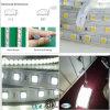 6000k refroidissent la bande blanche 5050 60LED/M 50m/Roll de lumière de bande de DEL