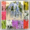 Nouvelle fleur artificielle de mariage de glycine de soie de conception
