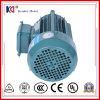 driefasen AC van het Gietijzer Asynchrone Motor voor TextielMachines