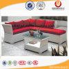 Sofà della mobilia della casa del rattan del giardino (UL-3018)