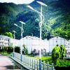 高品質の太陽街灯LEDの照明LED街灯のクリー族太陽LEDの街灯(YZY-LL-010)