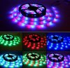 IP68 12V Ws2801 Digital Strip, Digital Addressable RGB LED Strip Ws2811 los 32pixel/M