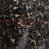 Обыкновенный толком ожог вне Silk Vevlet 54/55 краски