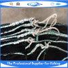 Сеть рыб PE Knotless (IMG_0035)