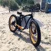 [500و] إطار سمين [مووتين] درّاجة كهربائيّة [رسب-505]