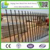 Black decorativo Powder Coated Steel Fence da vendere