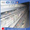 Система горячего позема клетки цыпленка слоя сбывания автоматического чистая