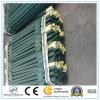 Galvanisiertes Pfosten-Großverkauf-Schwarzes oder Grün des Zaun-T