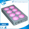 Медицинское Plants 660nm 460nm 360W СИД Grow Light