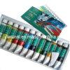 12 Farben-Nagel-Kunst-Acrylfarbfernsehen-Set