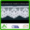 간단한 Design Crochet 미색 Mesh Elastic Lace