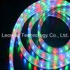 110V-220V LED Streifen-Licht mit einer 2 Jahr-Garantie 3528SMD RGB