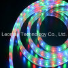 110V-220V het LEIDENE Licht van Stroken met RGB Garantie 3528SMD van 2 Jaar