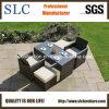 Muebles al aire libre de la rota popular (SC-A7615)