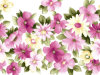 Decoratief Olieverfschilderij Flower voor Woonkamer