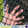 Cerca revestida da ligação Chain do PVC do uso popular da cerca do esporte (XA-CLF15)