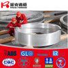 De Grote Gesmede Ringen van het aluminium